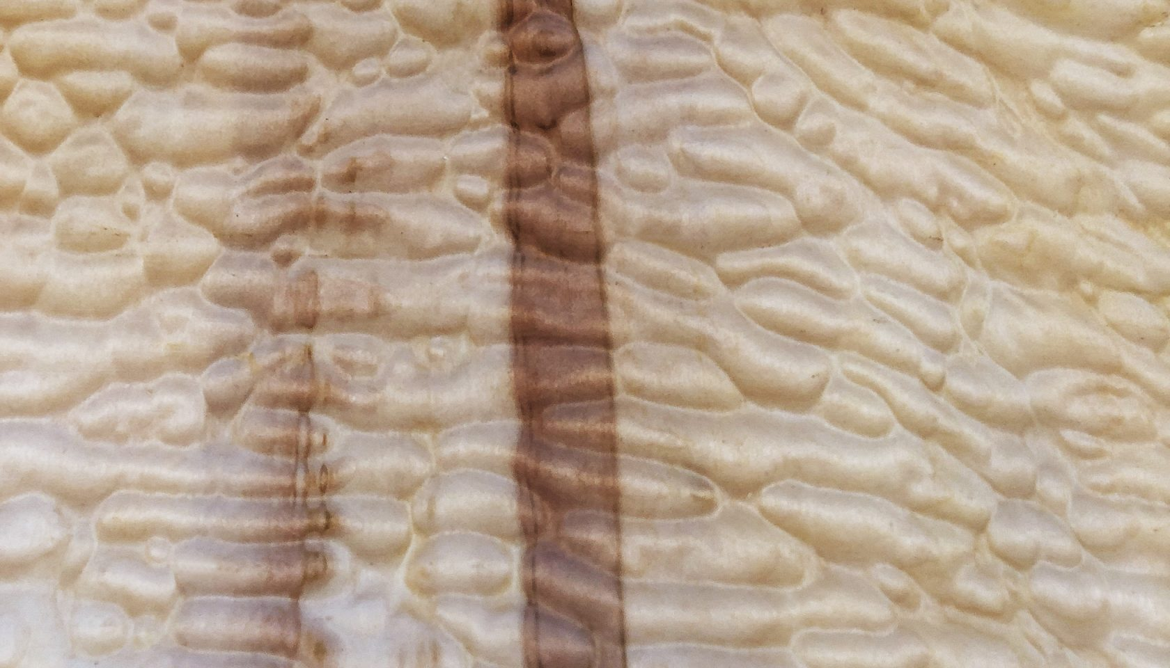 Brand new production of Quilted Maple available now